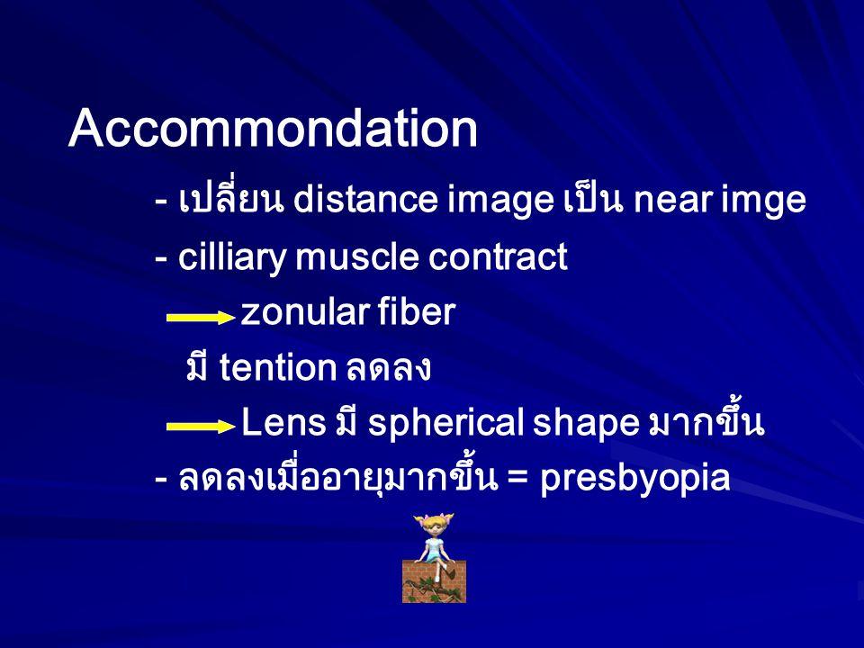 Accommondation - เปลี่ยน distance image เป็น near imge