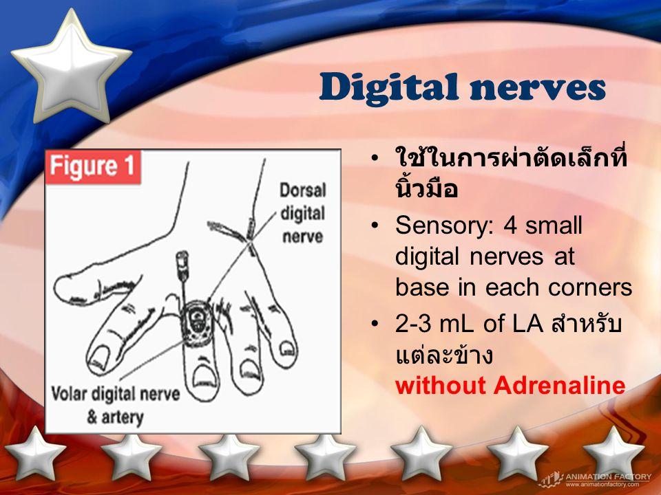 Digital nerves ใช้ในการผ่าตัดเล็กที่นิ้วมือ