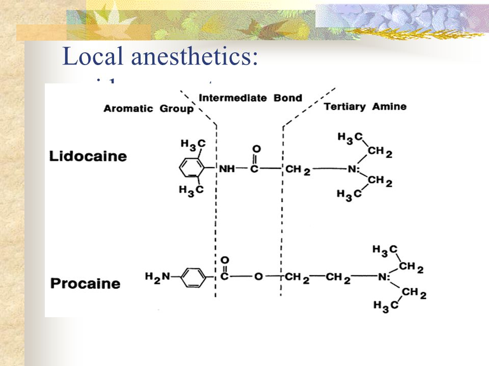 Local anesthetics: amides vs. esters
