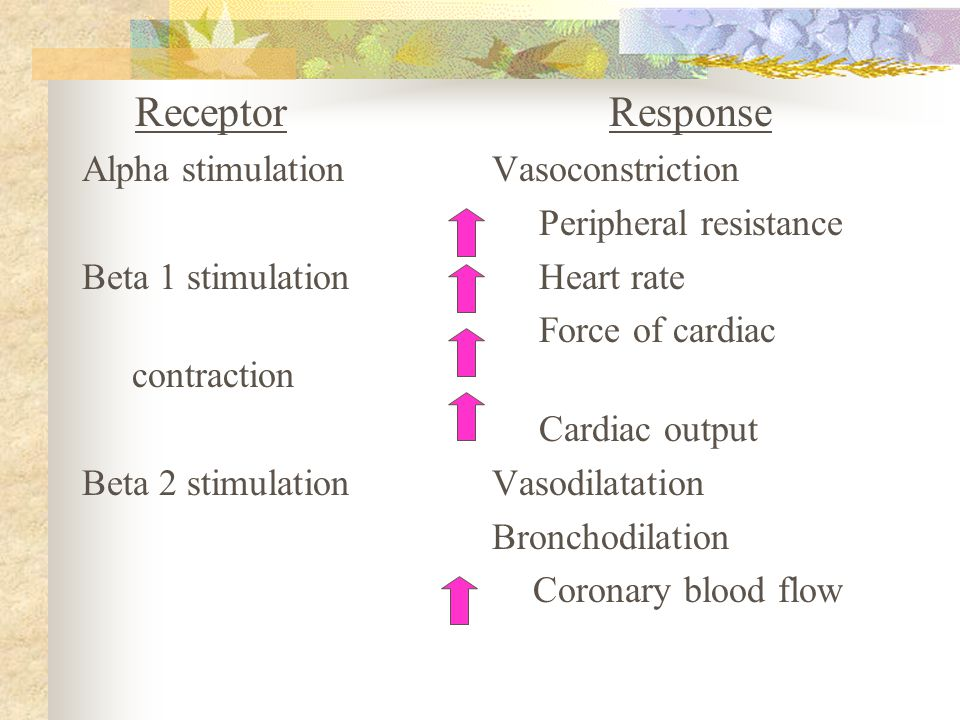 Receptor Response Alpha stimulation Vasoconstriction