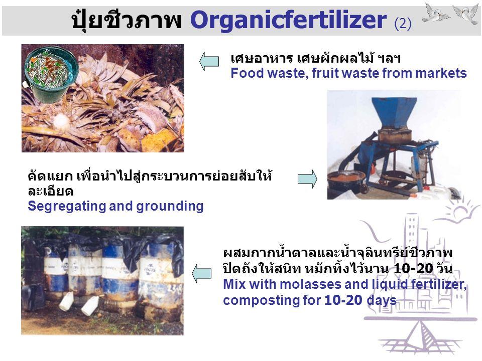 ปุ๋ยชีวภาพ Organicfertilizer (2)
