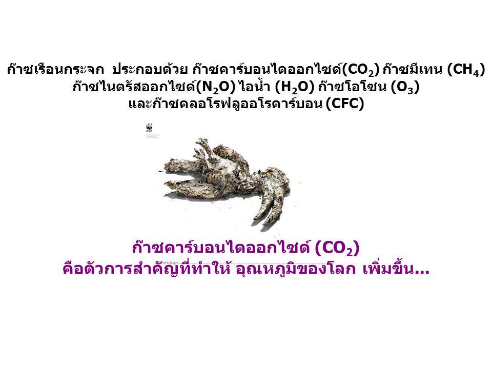 ก๊าซคาร์บอนไดออกไซด์ (CO2)