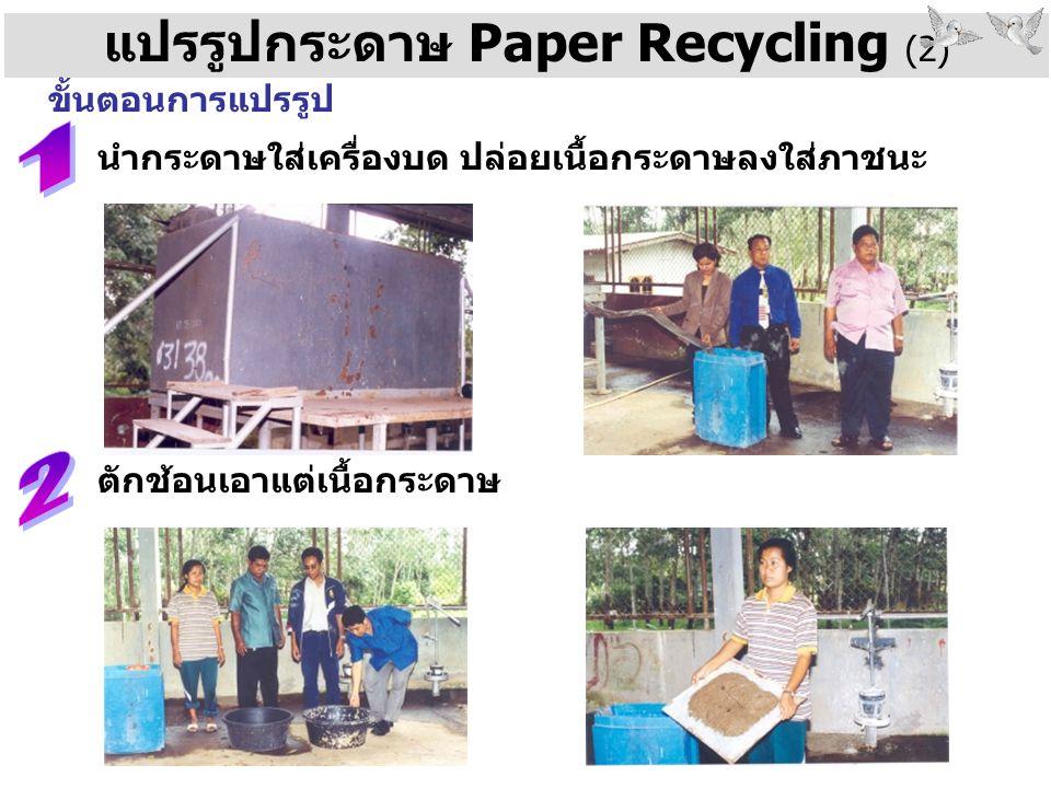 แปรรูปกระดาษ Paper Recycling (2)