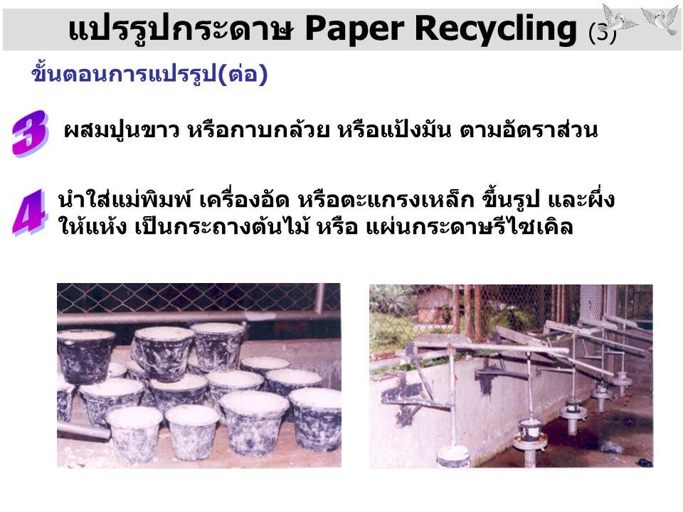 แปรรูปกระดาษ Paper Recycling (3)
