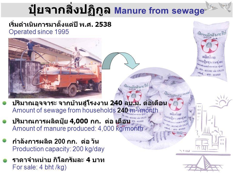 ปุ๋ยจากสิ่งปฏิกูล Manure from sewage