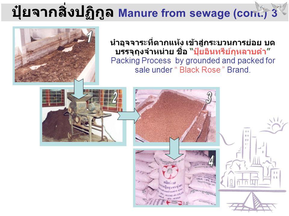 ปุ๋ยจากสิ่งปฏิกูล Manure from sewage (cont.) 3