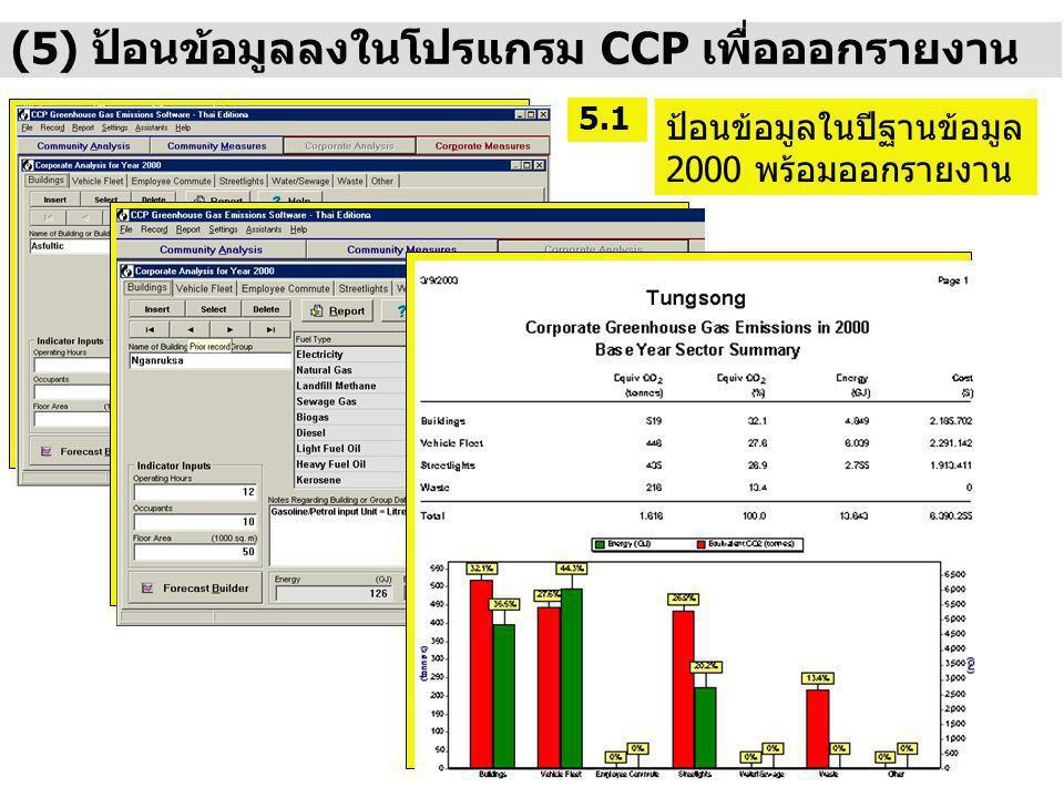 (5) ป้อนข้อมูลลงในโปรแกรม CCP เพื่อออกรายงาน