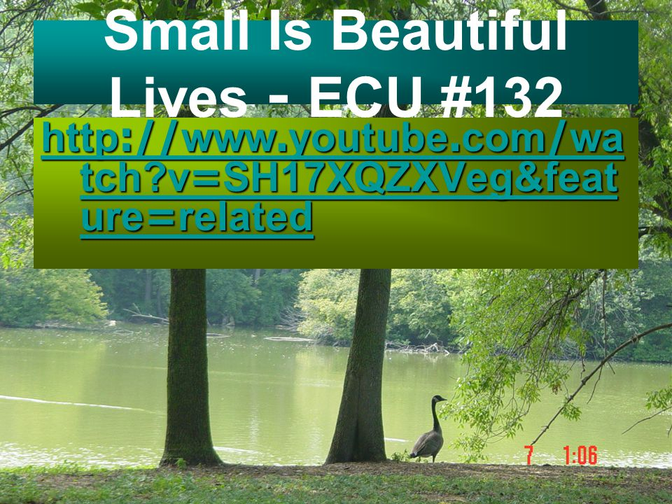 Small Is Beautiful Lives - ECU #132