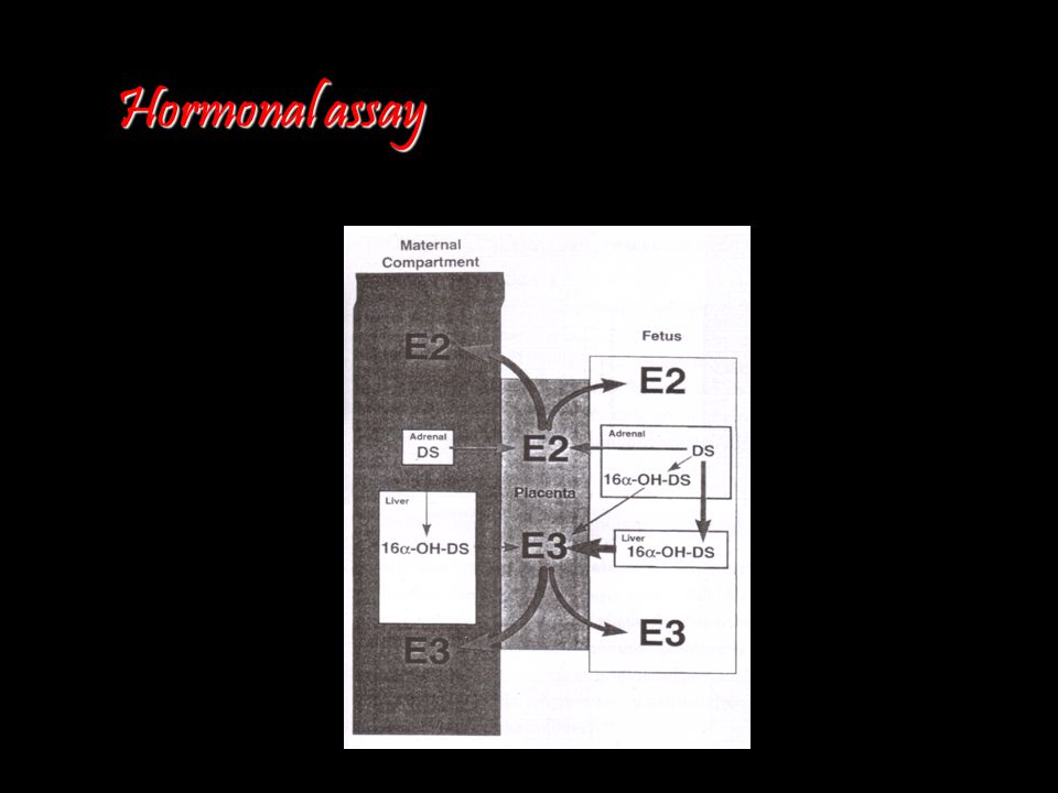 Hormonal assay