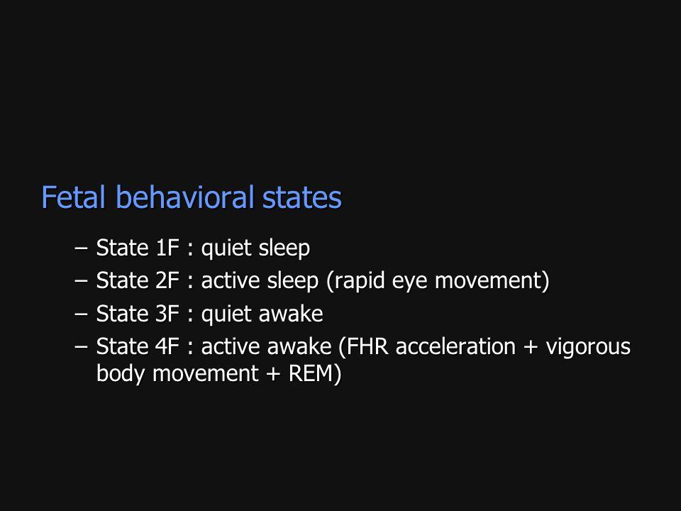 Fetal behavioral states