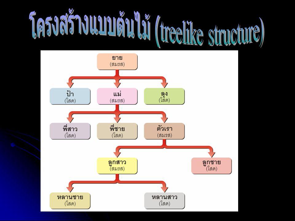 โครงสร้างแบบต้นไม้ (treelike structure)