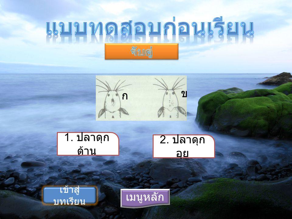 แบบทดสอบก่อนเรียน จับคู่ ข ก 1. ปลาดุกด้าน 2. ปลาดุกอุย เมนูหลัก