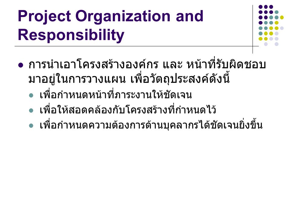 Project Organization and Responsibility