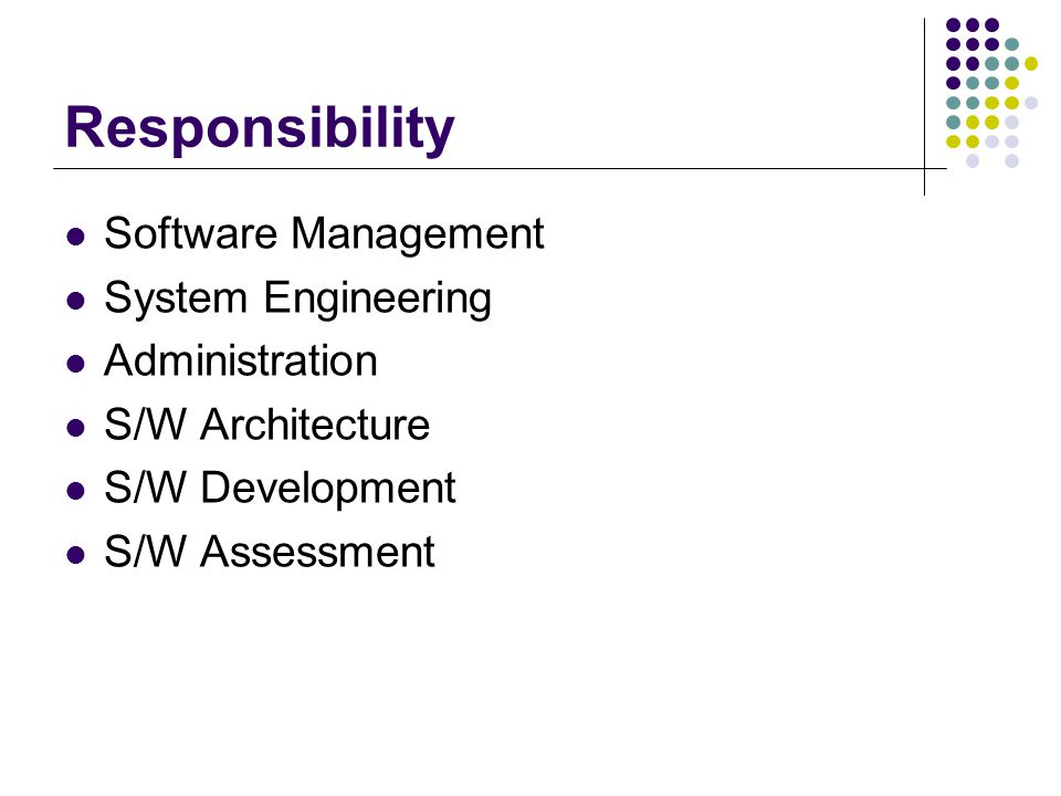 Responsibility Software Management System Engineering Administration