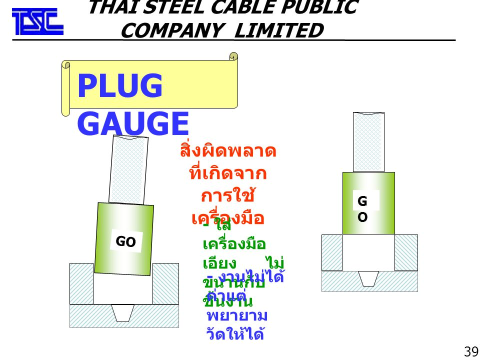 PLUG GAUGE THAI STEEL CABLE PUBLIC COMPANY LIMITED