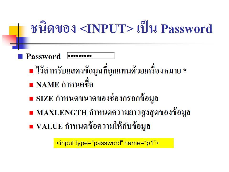 <input type= password name= p1 >