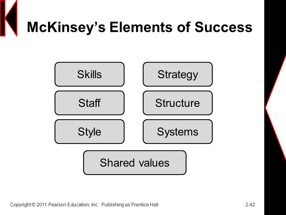 McKinsey's Elements of Success
