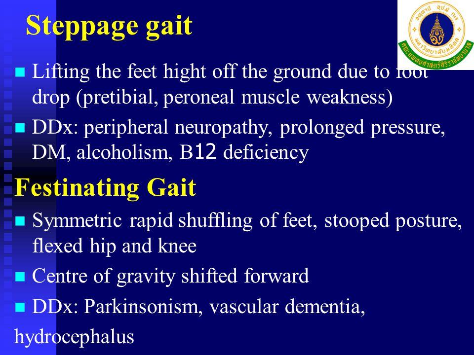Steppage gait Festinating Gait
