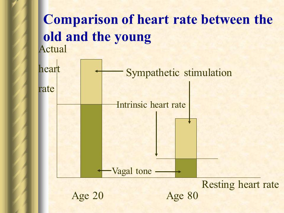 Comparison of heart rate between the old and the young