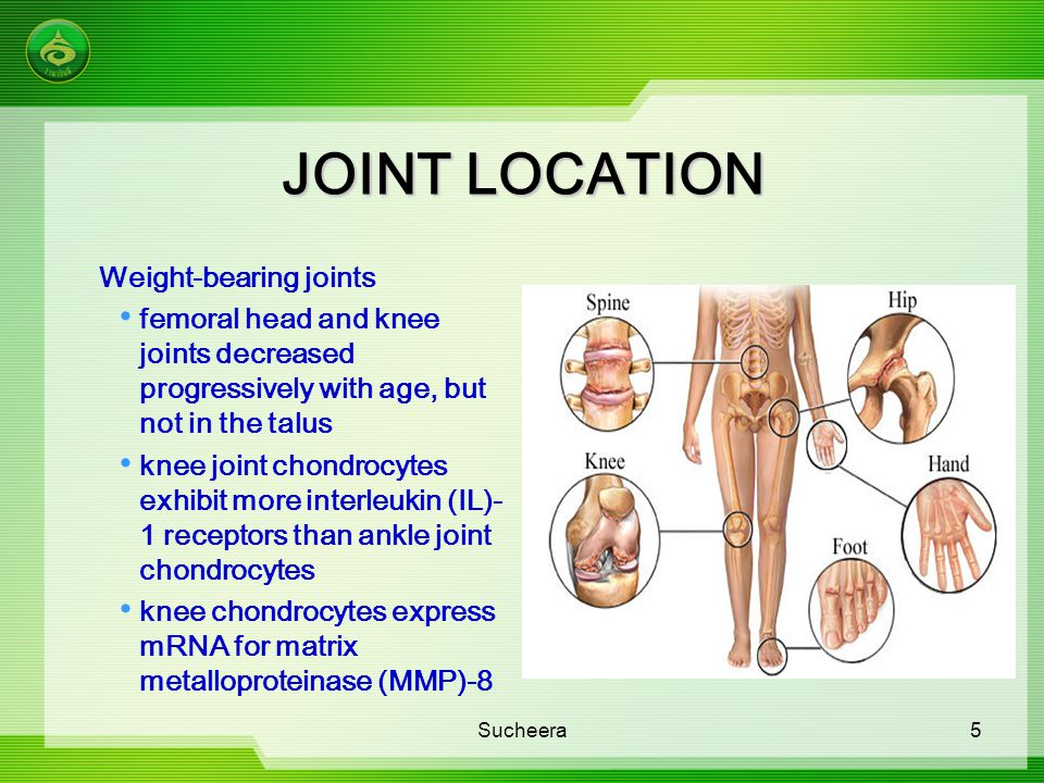 JOINT LOCATION Weight-bearing joints