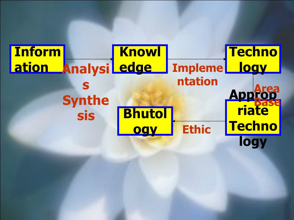 Technology Analysis Synthesis Appropriate Bhutology