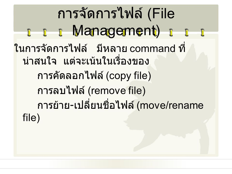 การจัดการไฟล์ (File Management)
