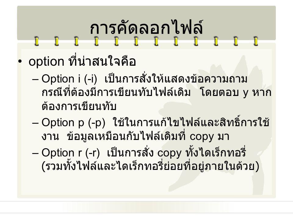 การคัดลอกไฟล์ option ที่น่าสนใจคือ