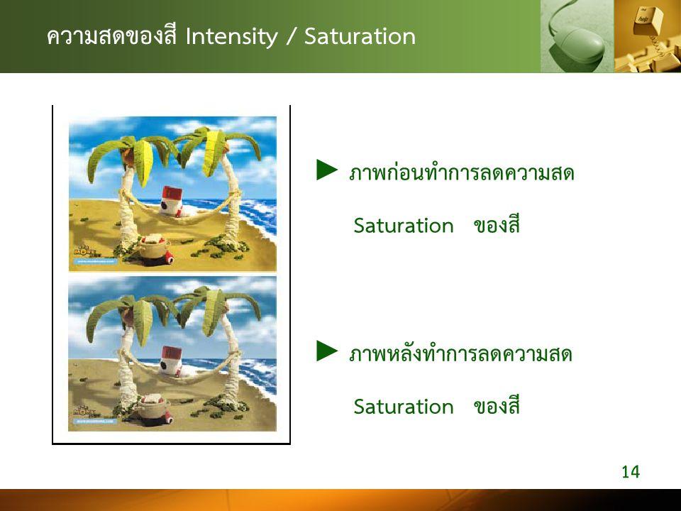 ความสดของสี Intensity / Saturation