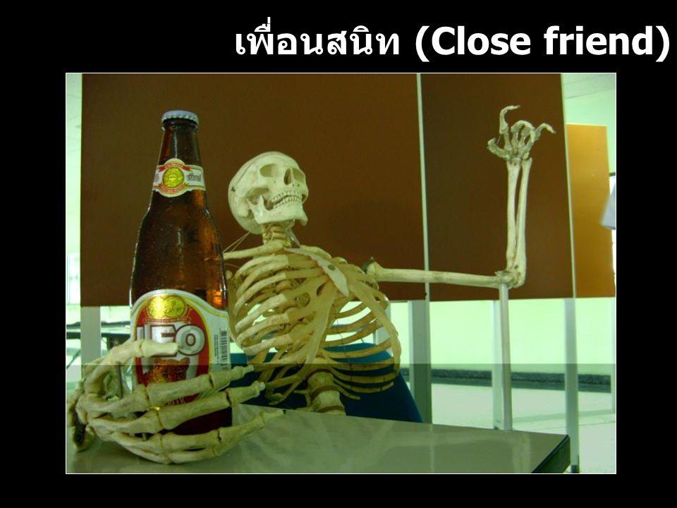 เพื่อนสนิท (Close friend)
