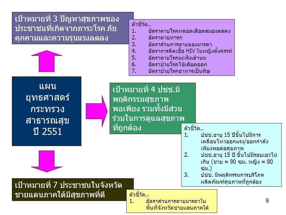 แผนยุทธศาสตร์กระทรวงสาธารณสุข ปี 2551