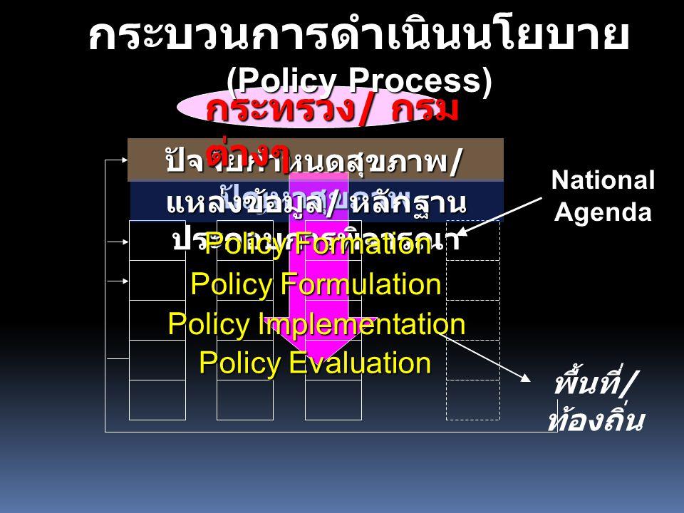 กระบวนการดำเนินนโยบาย (Policy Process)
