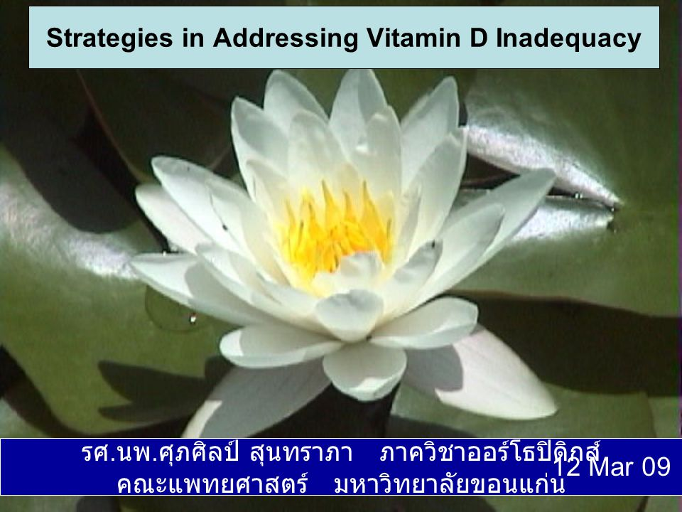 Strategies in Addressing Vitamin D Inadequacy
