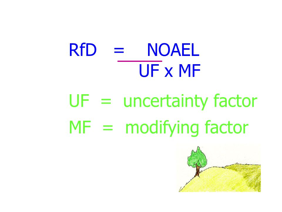 RfD = NOAEL UF x MF UF = uncertainty factor MF = modifying factor