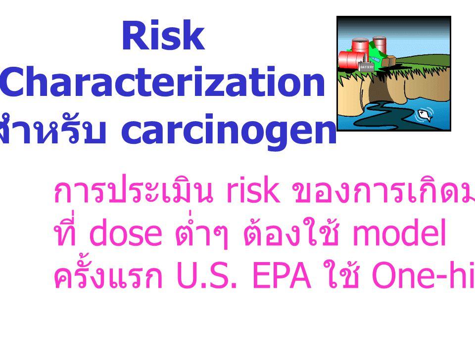 Risk Characterization สำหรับ carcinogen