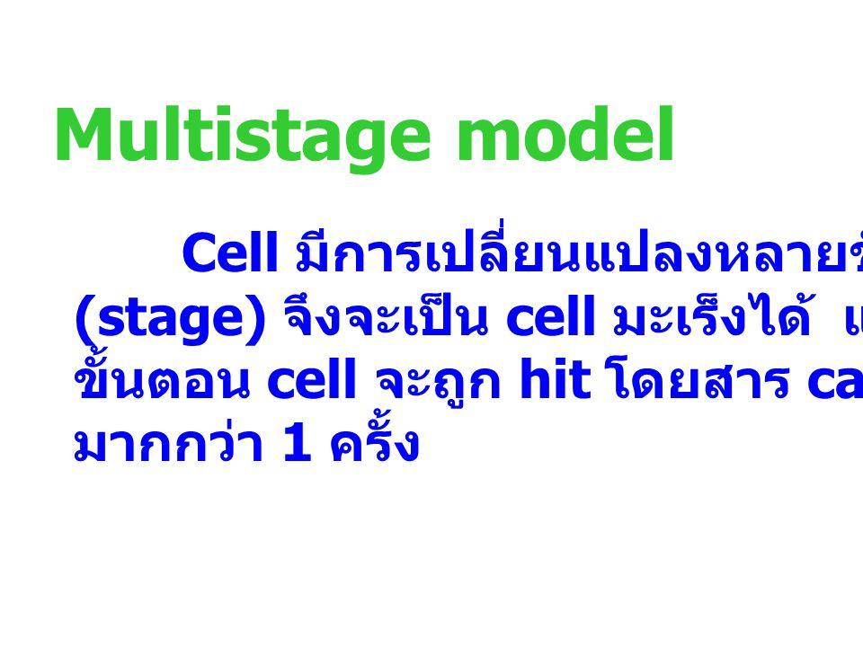 Multistage model Cell มีการเปลี่ยนแปลงหลายขั้นตอน