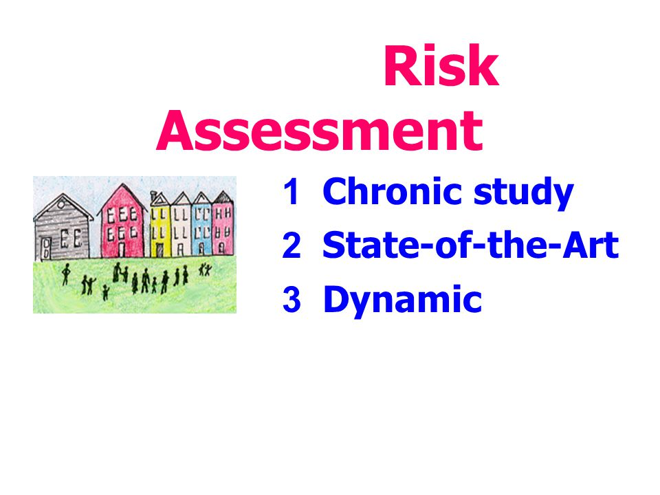 Risk Assessment 1 Chronic study 2 State-of-the-Art 3 Dynamic