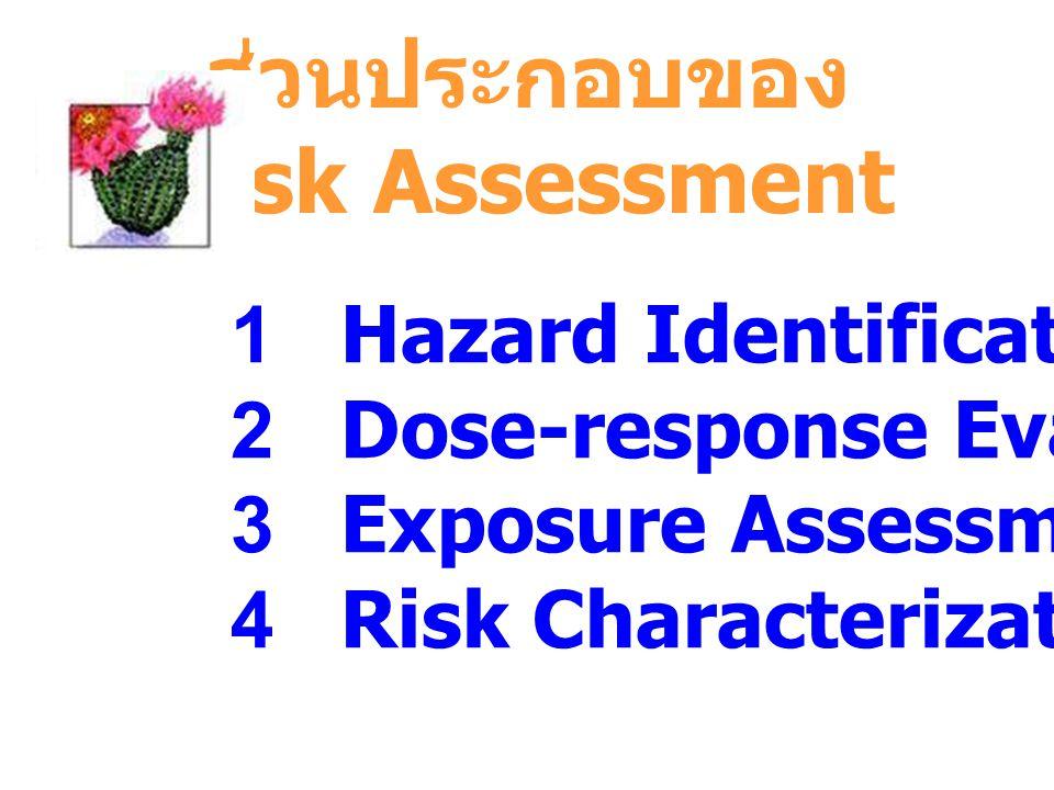 ส่วนประกอบของ Risk Assessment