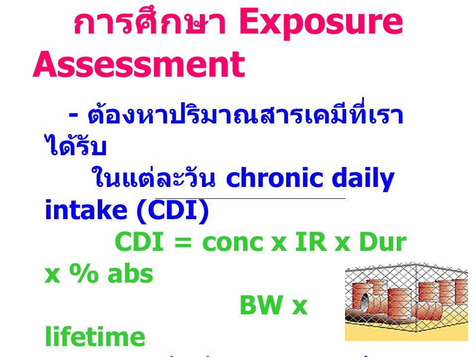 การศึกษา Exposure Assessment