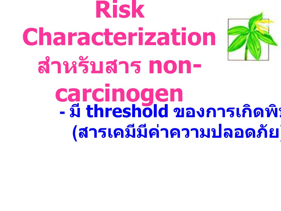 Risk Characterization สำหรับสาร non-carcinogen