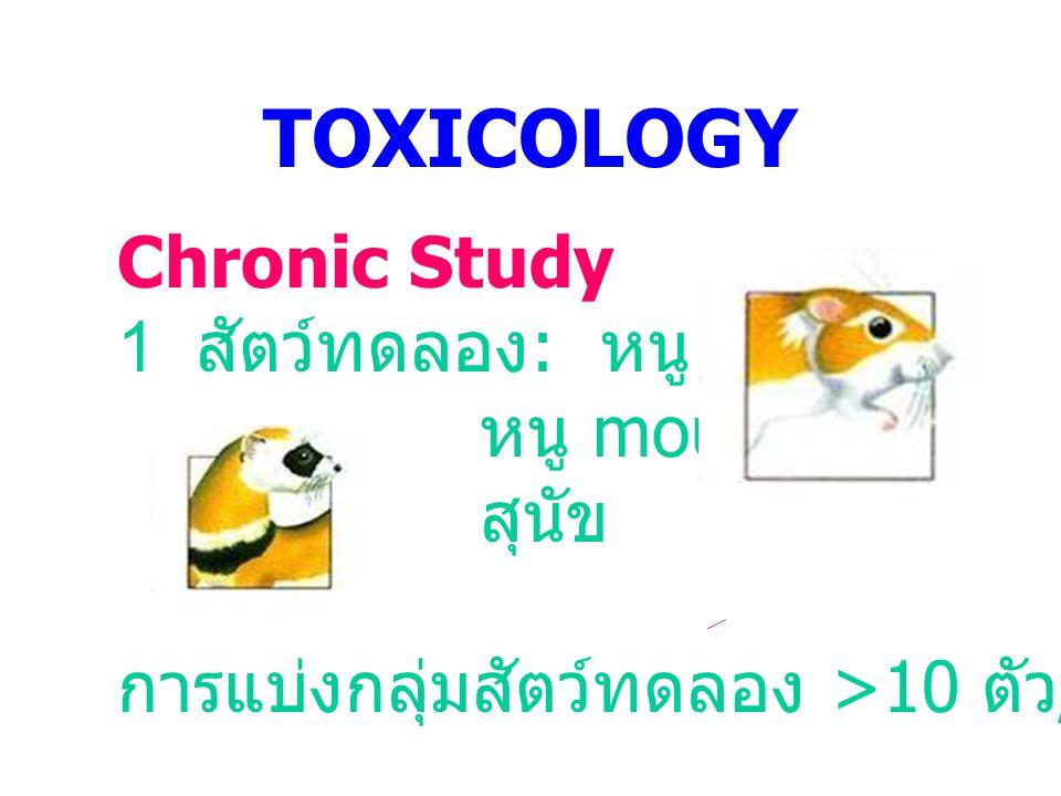 TOXICOLOGY Chronic Study 1 สัตว์ทดลอง: หนู rat หนู mouse สุนัข