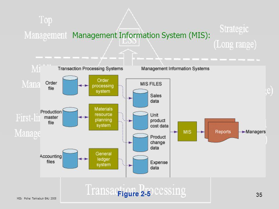 Management Information System (MIS):