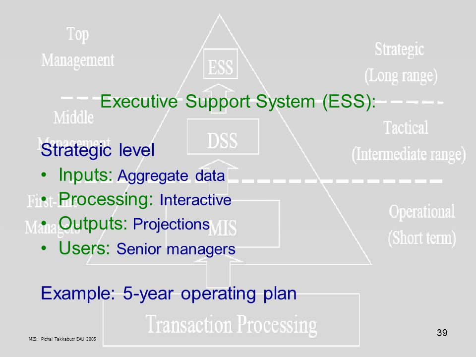 Executive Support System (ESS):