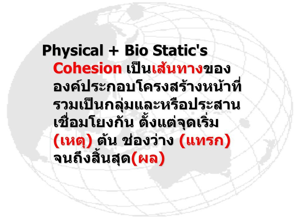 Physical + Bio Static s Cohesion เป็นเส้นทางขององค์ประกอบโครงสร้างหน้าที่รวมเป็นกลุ่มและหรือประสานเชื่อมโยงกัน ตั้งแต่จุดเริ่ม (เหตุ) ต้น ช่องว่าง (แทรก) จนถึงสิ้นสุด(ผล)