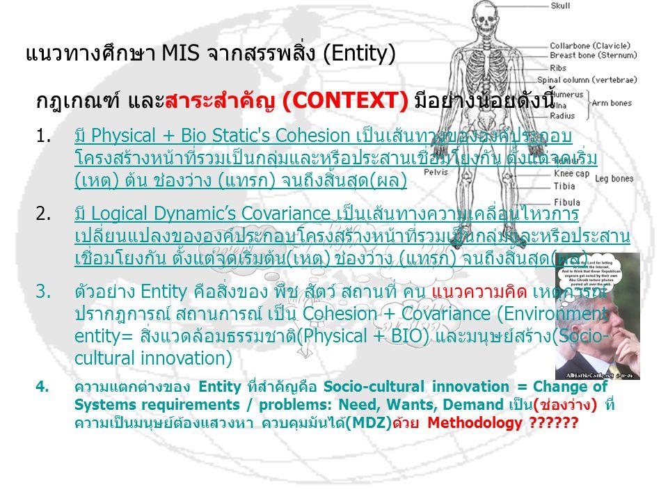 แนวทางศึกษา MIS จากสรรพสิ่ง (Entity)