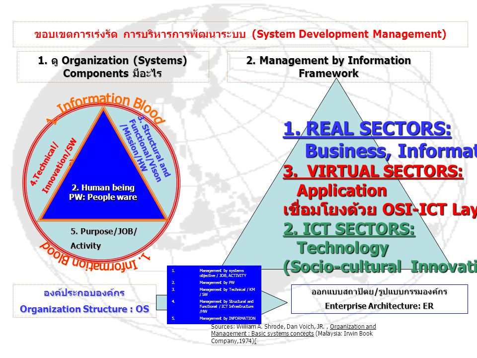 1. REAL SECTORS: Business, Information 3. VIRTUAL SECTORS: Application
