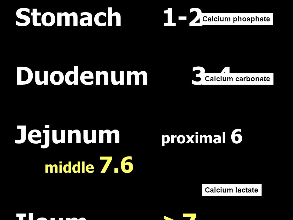 Jejunum proximal 6 middle 7.6 Ileum >7