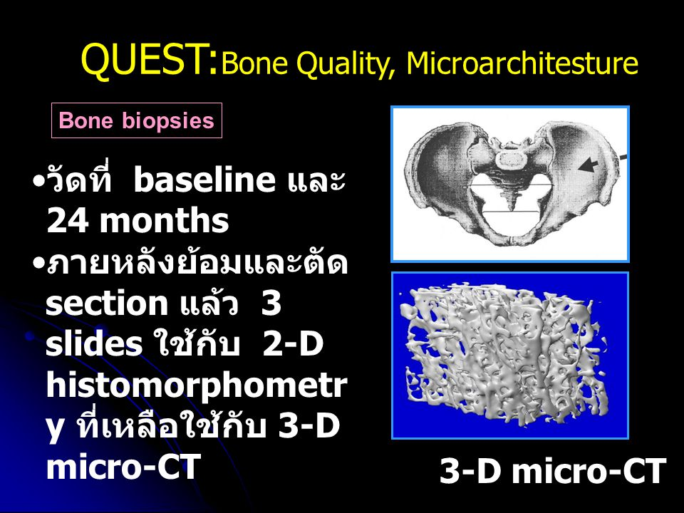 QUEST:Bone Quality, Microarchitesture