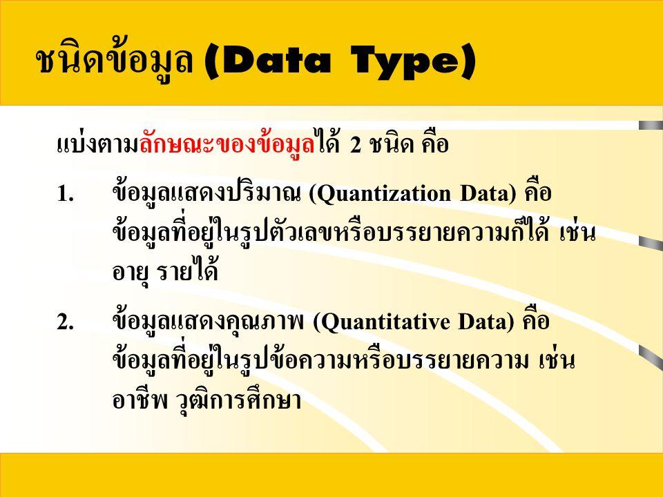 ชนิดข้อมูล (Data Type)