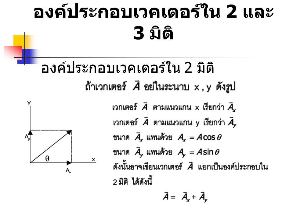 องค์ประกอบเวคเตอร์ใน 2 และ 3 มิติ