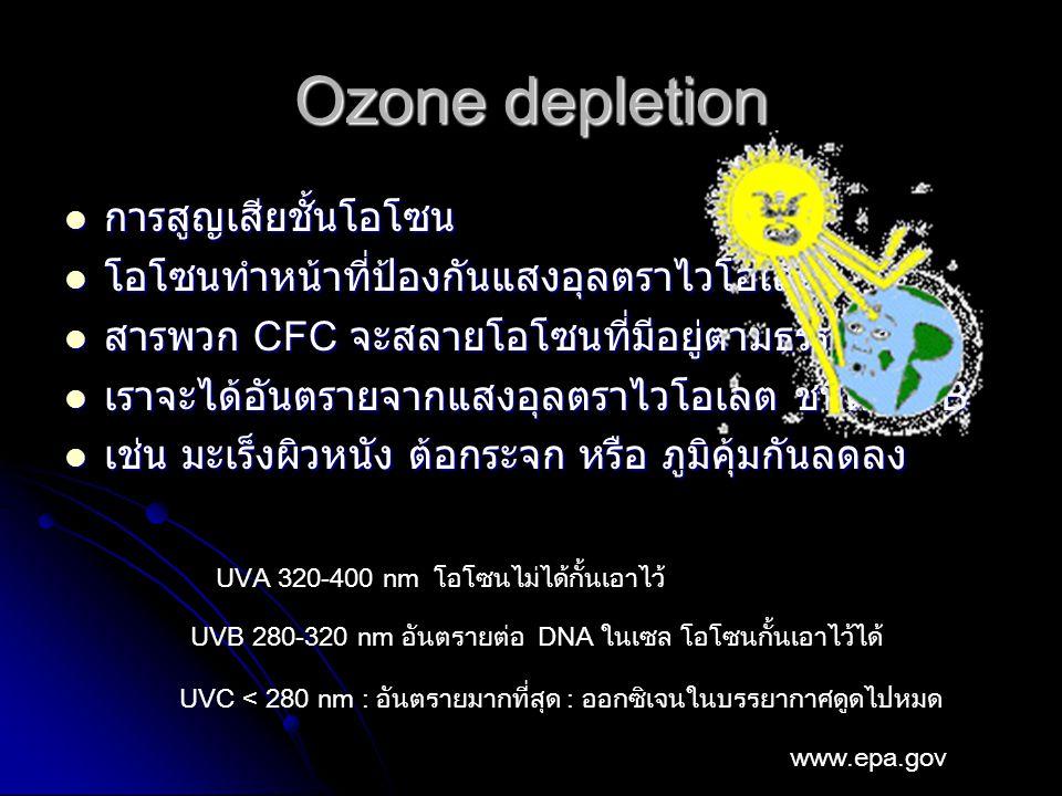 Ozone depletion การสูญเสียชั้นโอโซน